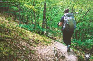 Die 5 schönsten Rheinsteig Etappen zum Wandern am Rhein