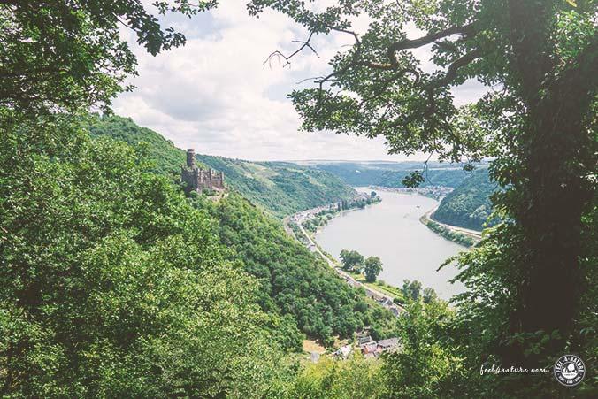 Rheinsteig Wandern Aussichtspunkte