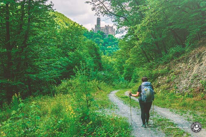 Rheinsteig Wanderweg Burgen