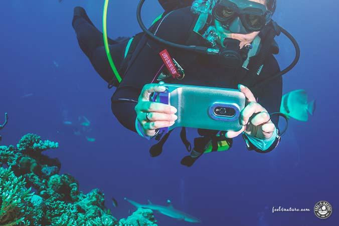 Unterwassergehäuse iPhone Test