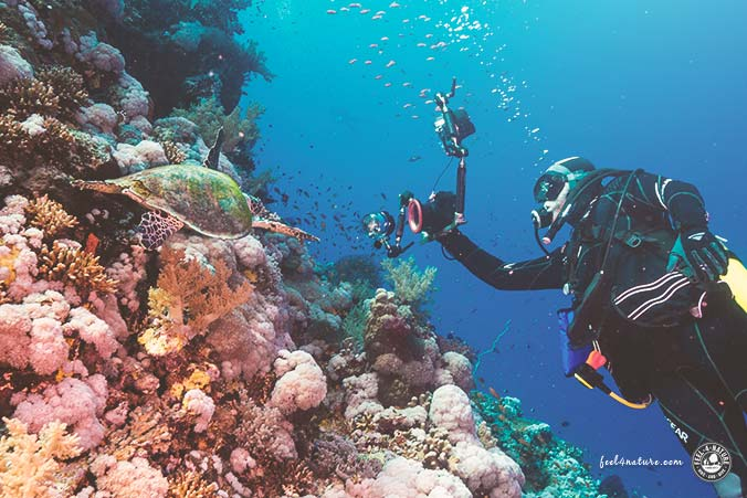 Unterwasserkamera Tauchen Test