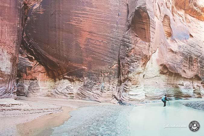 Buckskin Gulch Paria Canyon Confluece