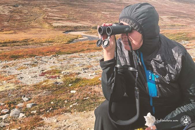 Fernglas Wandern Trekking