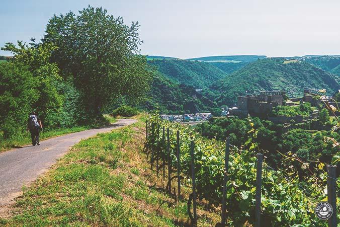 Rhein Wandern Tipps