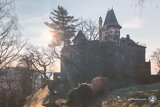 Rheinsteig Hotel Burg
