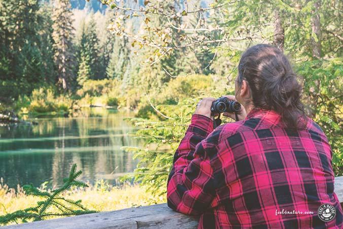 Taschenfernglas Test Naturbeobachtungen