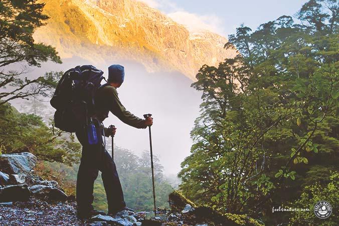 Trekkingrucksack klassisch Test
