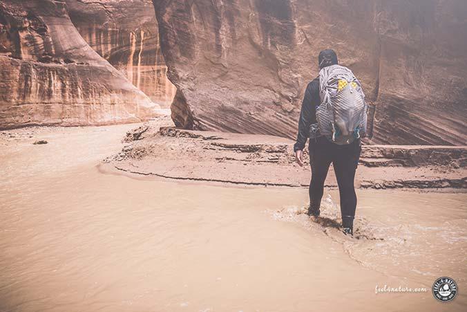 Trekkingrucksack USA