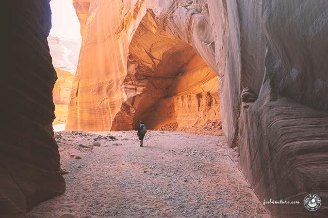 Wire Pass Canyon Ausgang