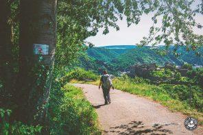 Die 5 schönsten Rheinburgenweg Etappen zum Wandern am Rhein