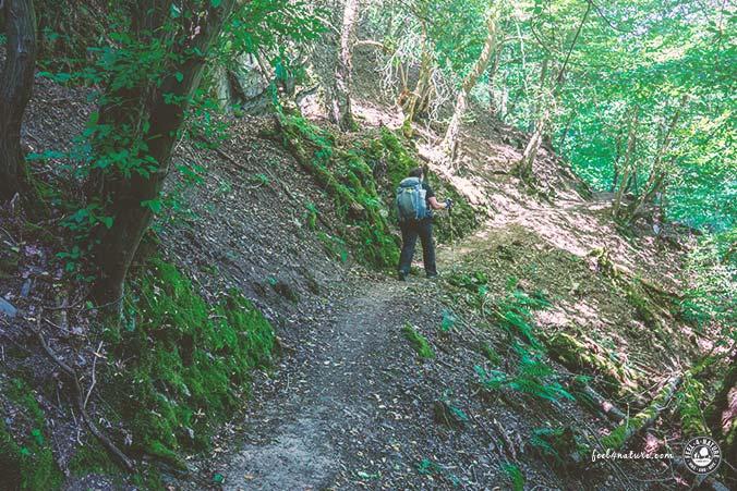 Rheinburgenweg schönste Etappen