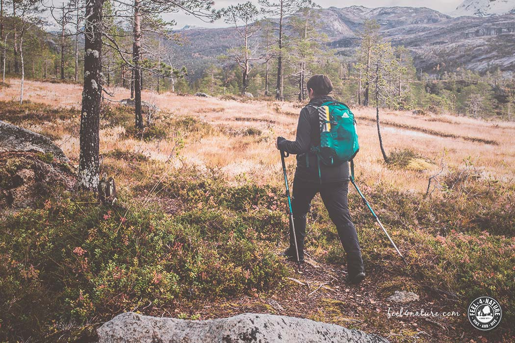 Tagesrucksack Test: Die besten Outdoor Daypacks zum Wandern › feel4nature