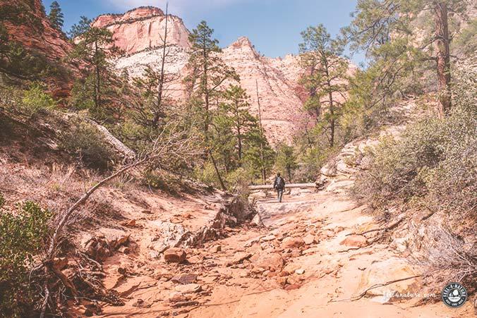 Zion Nationalpark Wanderung Gifford Canyon