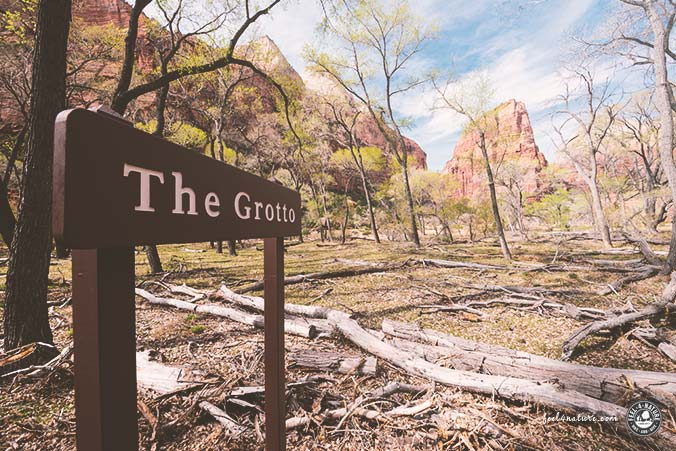 Zion Nationalpark Wanderung
