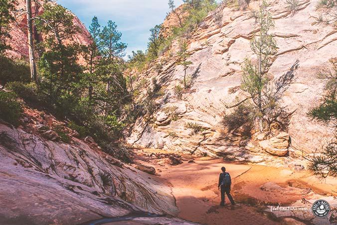 Zion Nationalpark Wanderwege