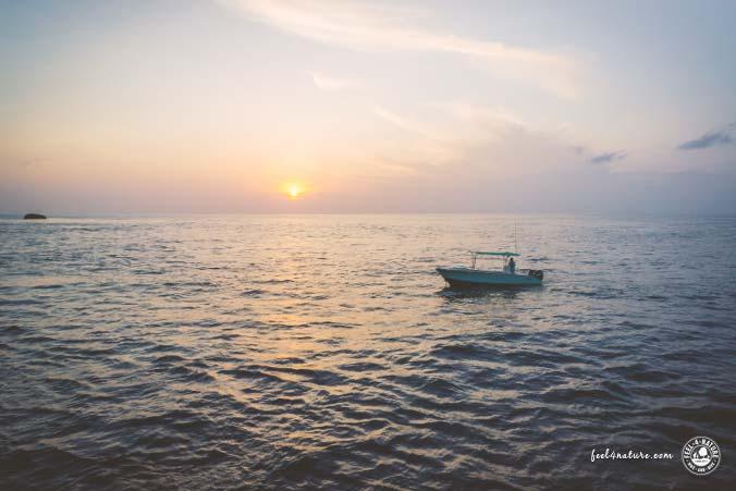 Tauchen Mittelmeer