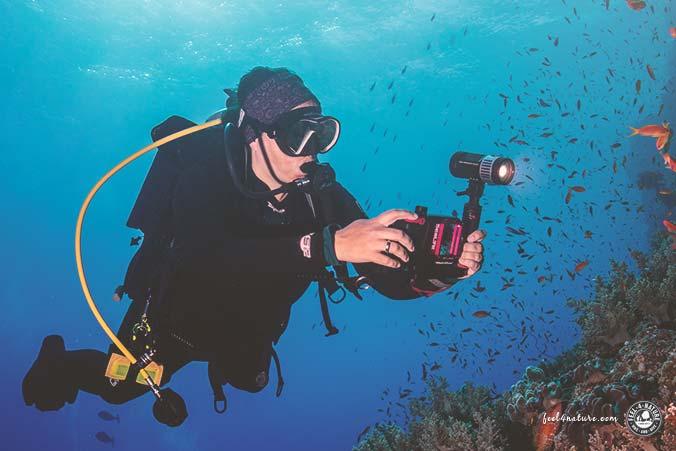 iPhone Unterwasser Hülle Testsieger