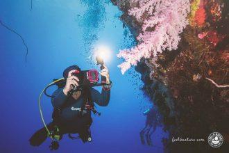 iPhone Unterwassergehäuse Test